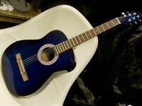 blue steel string electro acoustic inc gig bag