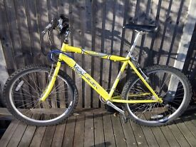 "26"", 18 gear Raleigh Mountain Bike with lock+helmet!"