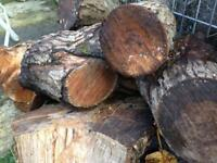 Sessioned logs