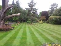 Landscaping - Landscape Maintenance Operative