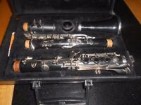 Clarinet and hard case