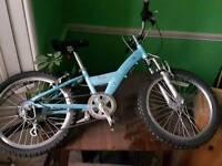 Skye Revolution bike 11'' frame great condition