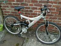 Adults 18 inch mountain bike just serviced