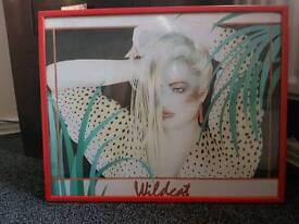 """Original retro picture """"wildcat"""""""