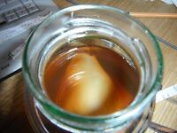 A jar of Kombucha tea and Kombucha scoby