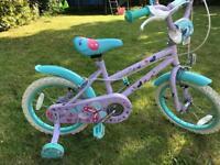Girls Butterfly Bike