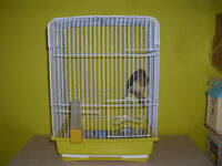 FEMALE CANARY WITH CAGE