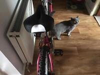 Bike giles wemen