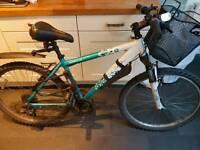 Apollo Twilight woman's mountain bike