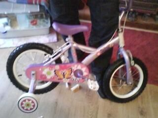 girls purple and pink flower and butterfly bike
