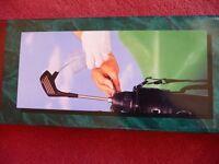 Golfer's Drink Dispenser & Cooler