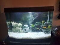 LOVEFISH PANORAMA FISH TANK 64L