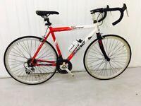 13afa00e9b7 VIKING Road Bike 12 Speed Index Gears Medium Lightweight Alloy Frame