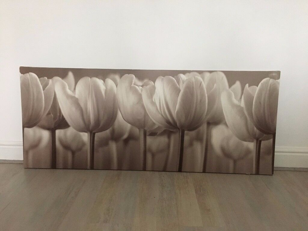 Contemporary large tulip canvas print in warm coffee and cream tones. very good condition