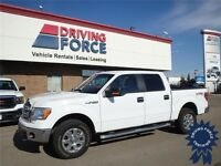2014 Ford F-150 XLT XTR SuperCrew 4WD - 5.0L V8 - 28,309 KMs