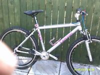 RETRO MONTAIN BIKE,CANYON 9675 PRO TEAM 1993
