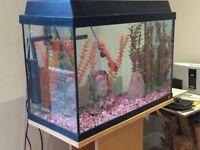 Fluval fish tank/aquarium.