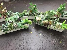 5no. Pre loved. Artificial plants in white plastic troughs