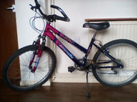 EMELLE STAR GIRL'S BICYCLE – IN EXCELLENT WORKING ORDER
