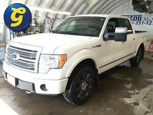 2010 Ford F-150 PLATINUM*SUPERCREW*NAVIGATION*SUNROOF*LEATHER*BA Kitchener / Waterloo Kitchener Area image 1
