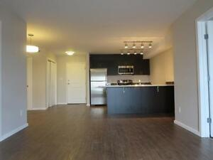 Beautiful Open concept / 2 Bed 2 bath Apartments/ SD only $299