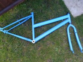 BICYCLE FRAME AND FORKS