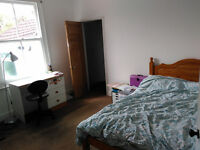 Double room in Easton house, £450pcm (rent&bills)