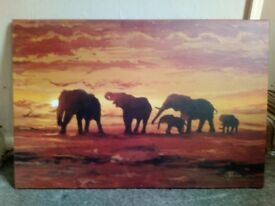 Selling a large Elephant canvas and a large picture which includes the frame
