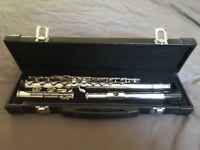Mistral Flute complete with hard case.