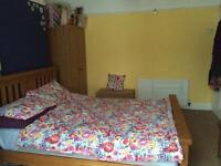 Double room, Peverell, £369pm ALL BILLS INCLUDED and Fully Furnished