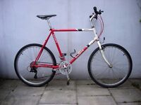 Mens Mountain/ Commuter Bike by Giant, Red & White, LARGE SIZE , JUST SERVICED / CHEAP PRICE!!!!!!!!