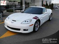 2007 Chevrolet CORVETTE Z06 EDITION RON FELLOWS GT1 CHAMPION