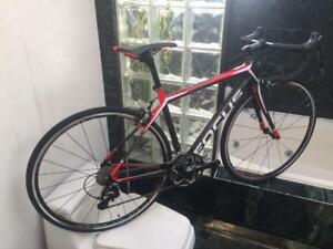 BRAND NEW (ALL SIZES) FOCUS CAYO 105 CARBON ROAD BIKE