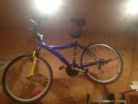 Mountain bike make offer