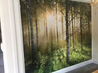£45 PER FEATURE WALLPAPER FITTING (WALLS'R'US) WALLPAPER SPECIALISTS. CALL/TEXT ANYTIME.