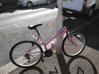 universal pink ladies mountain bike