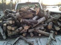 Firewood dry seasoned poplar
