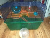 Hamster Cage suitable for a Syrian Hamster.