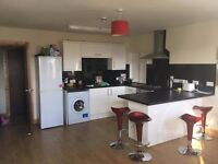 2 SPACIOUS DOUBLE ROOMS TO RENT!!! (4 bed ***student*** flat!!!) Reform Street, DUNDEE CITY CENTRE!!