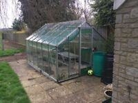 Large Greenhouse 12ft x 8ft for sale with potting tables inside