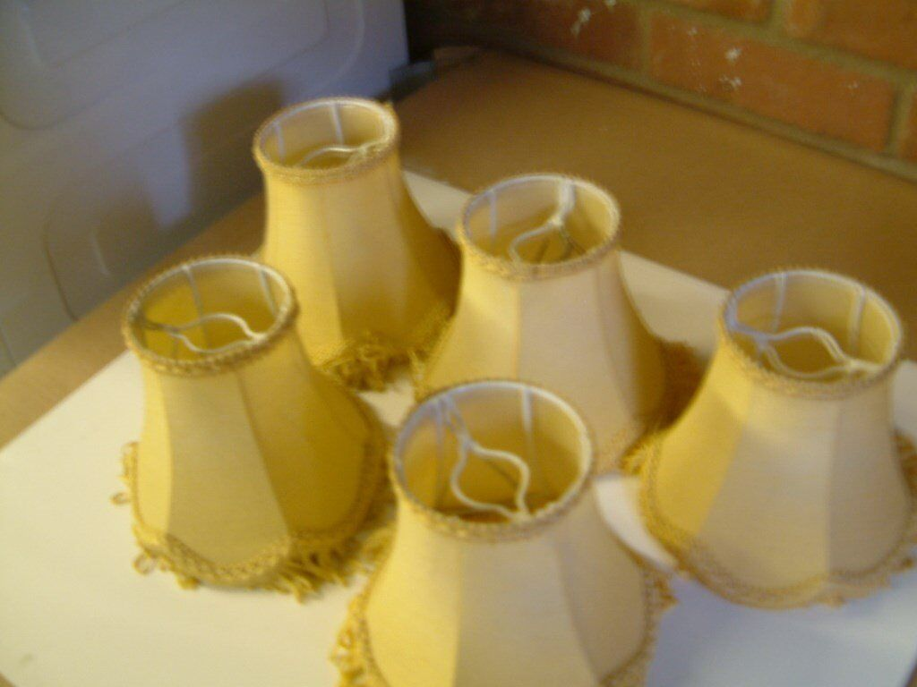 5 Small Light Shades, colour as per the pictures