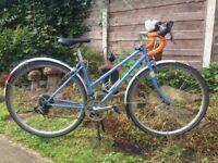 BOBBIN LUNA 16 speed Road bike,44cm celeste blue frame,Claris gears/shifters,700c wheels