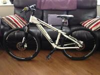 Trek Skye SLX Series Women's Mountain Bike