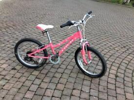 """20"""" Wheel Trek Bike"""