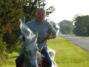 Horse riding club, Saddle up Looking for a few good men or women Sarnia Sarnia Area image 2