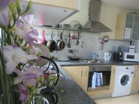 1 Room to rent in cosy flat with balcony in Hammersmith and Fulham area