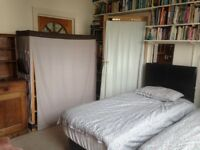 Bedsit twinbedded room to let