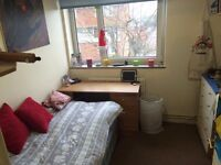 Cosy Single Room Avail in Flat Share