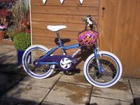 "Girls Bike 18"" Wheel Equator Bike"