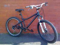 GT- Jump - mountain bike - Big Jump Professional Handlebars - good condition !